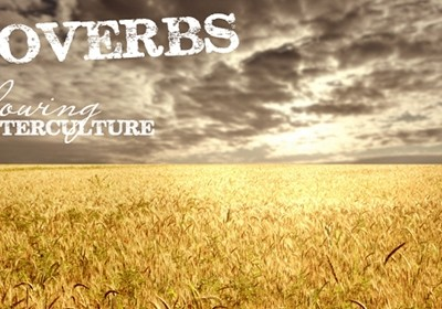 Proverbs: Plowing A Counter Culture