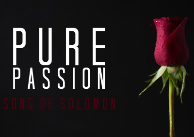 Song of Solomon: Pure Passion